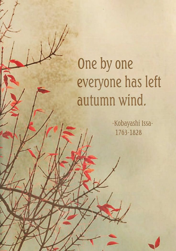Draw & Wings. - One by one, everyone has left, autumn wind....