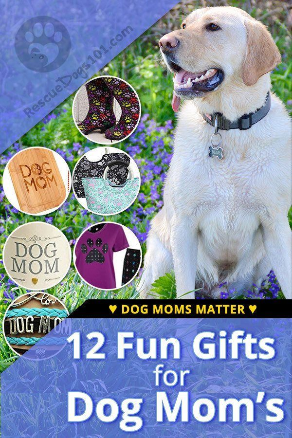Dogs Moms Deserve To Be Celebrated Have Fun With It For Mothers Day A Birthday Or Any Of The Year I Researched And Chose Items Would Love