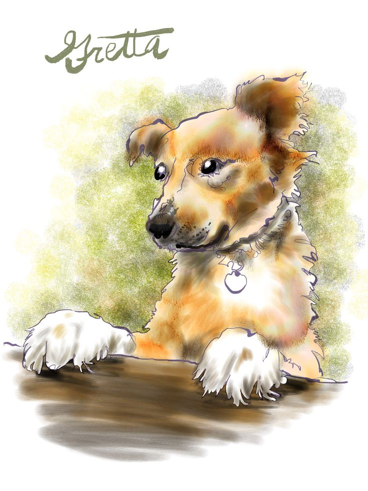 """""""A new pet makes an old heart thud."""" - from """"Hounds Of Wonder: A Life In Rescue Dogs"""" by B.D. Love. Illustration by Walt Taylor."""