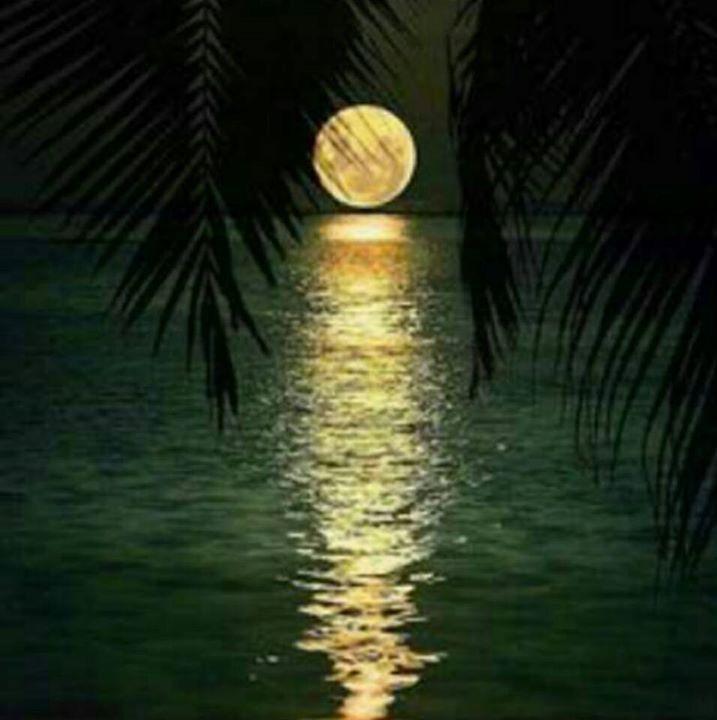 Смотреть порно восходящая луна