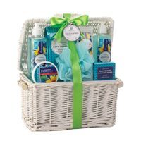 Show details for Blueberry  Sunflower Spa Basket