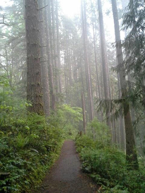 Silver falls hike Oregon