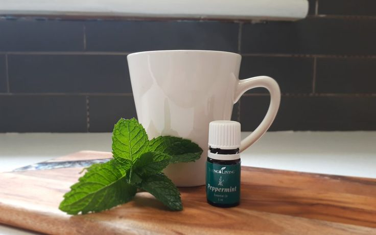 3 Reasons Why You Should Drink Peppermint Tea.  Peppermint has so many health benefits its hard to list them all. Learn just a few reasons why you should make peppermint tea part of your routine