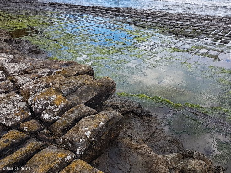 Tessellated Pavement on the Tasman Peninsula in Tasmania.  Click on the image above for a list of FREE things to do on the Tasman Peninsula and Port Arthur.