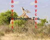 http://www.thepetitionsite.com/469/211/314/boycott-copenhagen-zoo-because-of-killing-giraffe-marius/ PLEASE SIGN THIS PETITION (TAKES A FEW SECONDS) TO BOYCOTT COPENHAGEN ZOO - PLEASE SHARE WITH OTHERS - THANKS! :)