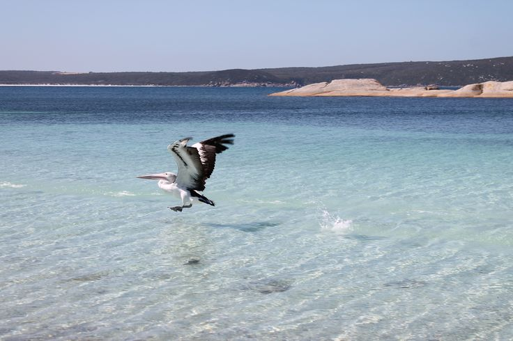 Two Peoples Bay Albany Western Australia