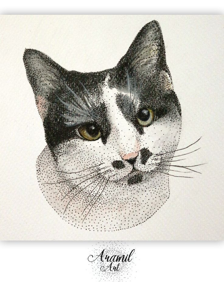 Black and white cat drawing, created by using about a thousand dots and colored with watercolour pencil. Art by Petra Jánosi. Come and check on FB. :) www.facebook.com/aramilart