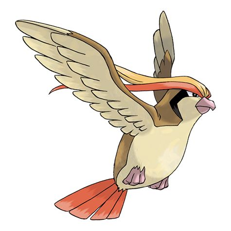 Pidgeot #018 Type: Normal, Flying Evolutions: Pidgey #016, Pidgeotto #017