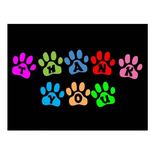color paw print text design thank you