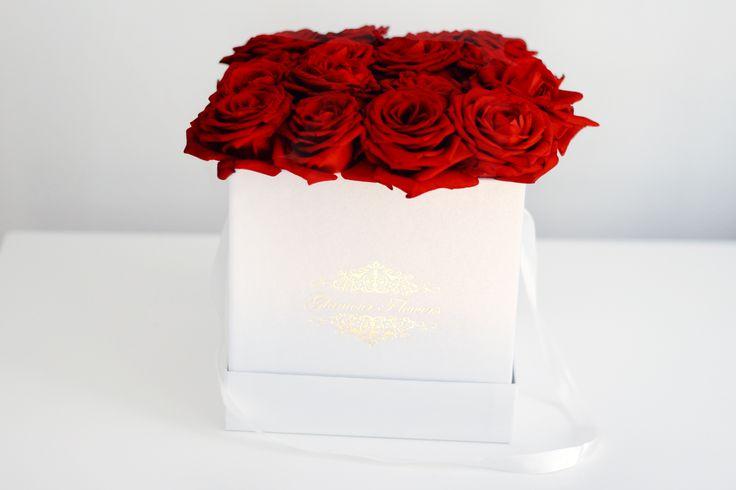 roseflowrbox, flowerbox, red roses