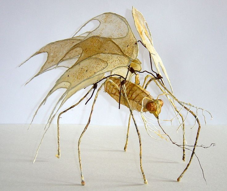 how to make a 3d insect