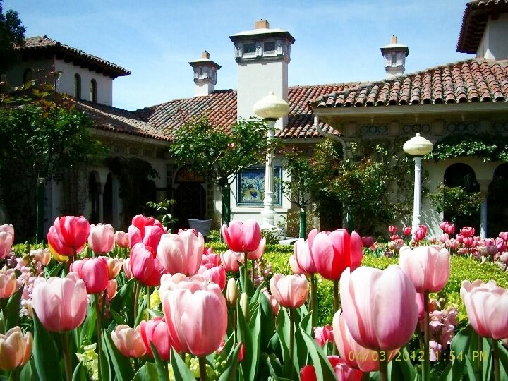 spring has sprung in the castle of  San Simeon