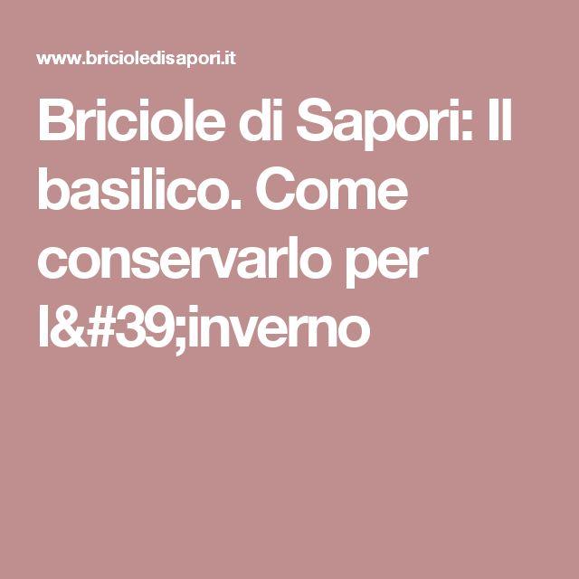 Briciole di Sapori: Il basilico. Come conservarlo per l'inverno