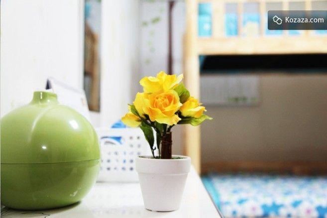 IN Guest House in Hongdae, Seoul - Green Room