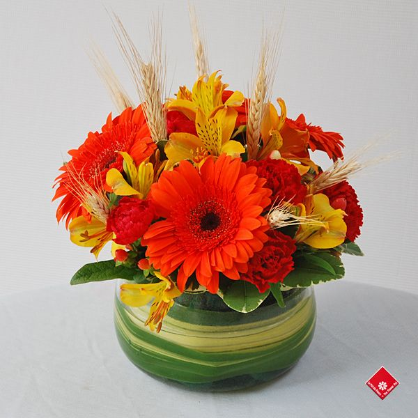 Thanksgiving Floral Arrangements | This product is currently unavailable, if you would like to know more ...