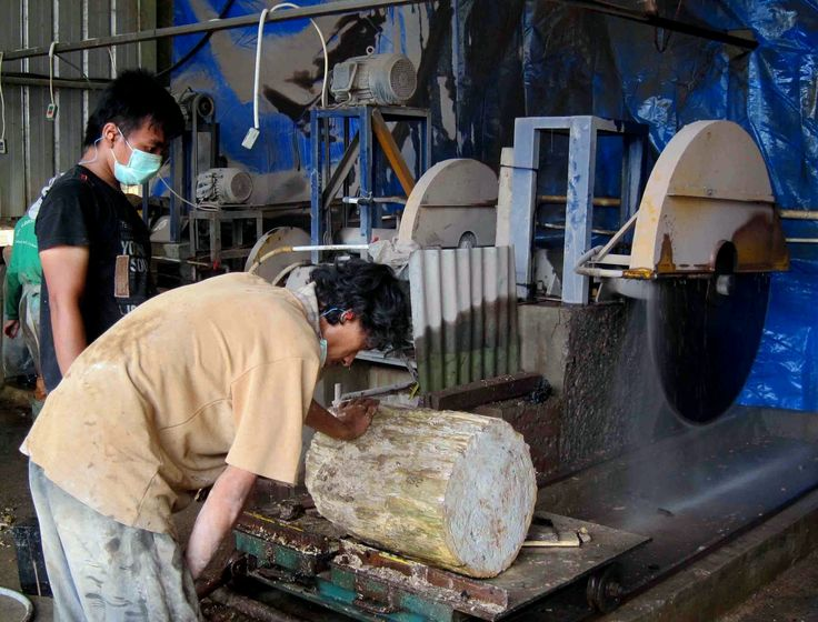 This is our factory cutting Petrified Wood tiles and to saw slabs. This fossil wood material is very beautiful to manufacture products with it. The fossils h...