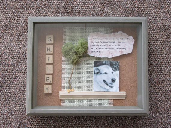 Best Shadow Box Ideas Pictures, Decor, and Remodel   Dog shadow box ...
