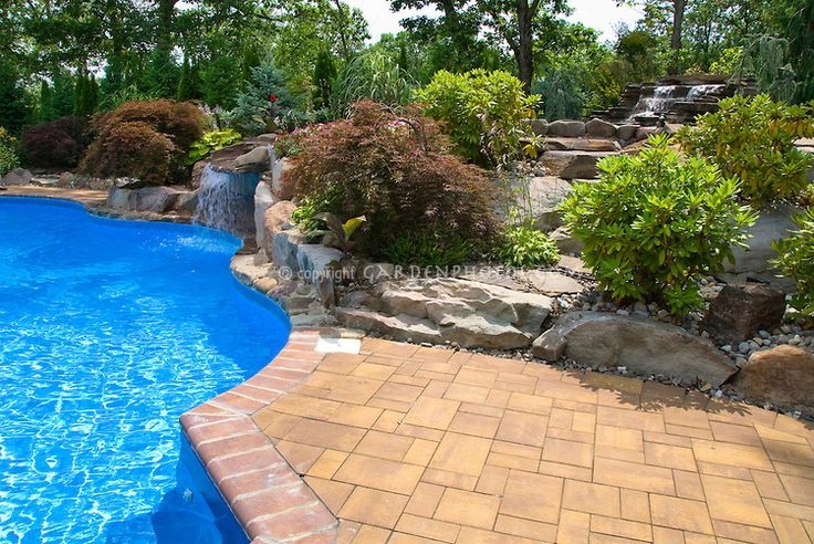 Swimming pool landscaping with deck patio shrubs trees for Swimming pool landscaping plants