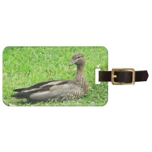 Brown Duck Tags For Luggage