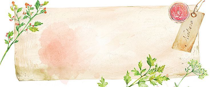 watercolor stationery plant background, Stationery, Watercolor, Plant, Background image