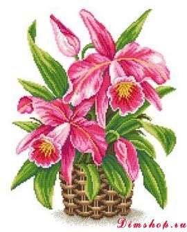 Embroidery Made with love CV-052 Queen of the Tropics