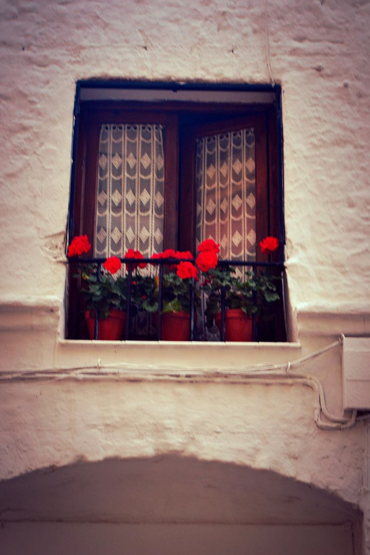 Typical window in Marbella