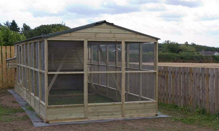 Large chicken house and run for up to 24 chickens | Wells Poultry Blog