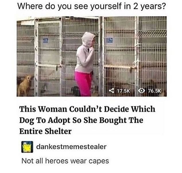 """I feel like I would do that. Not to make myself look like a hero, but I would not be able to decide which dog to take. I'd be like """"screw it, gimme all of em."""""""