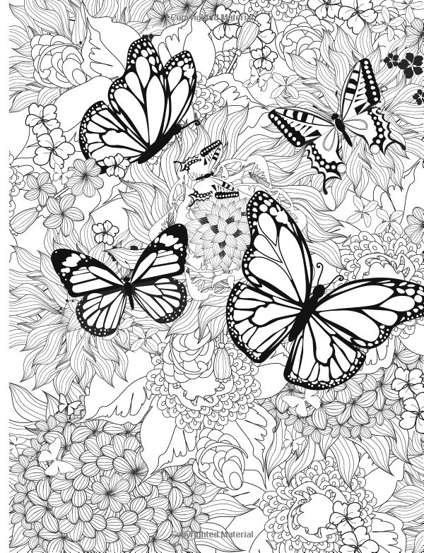Adult Coloring Book Butterflies And Flowers Stress Relieving Patterns Volume 7 Amazon