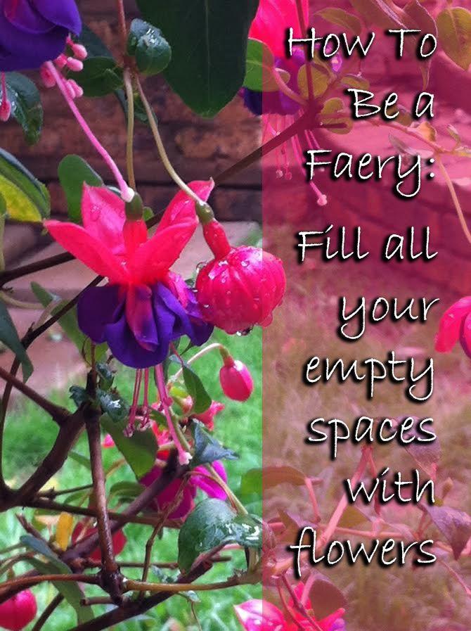 This week's How To Be a Faery tip! Enjoy folks. #howtobeafaery #Arach