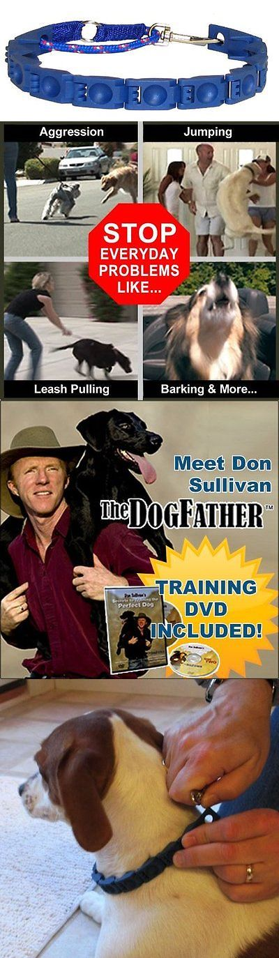 Training Videos and Books 116387: Don Sullivan Perfect Dog Training Obedience Command Collar Small Dvd Pet Puppy BUY IT NOW ONLY: $32.68