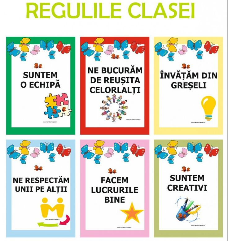 regulile clasei - regulile grupei - fluturasi