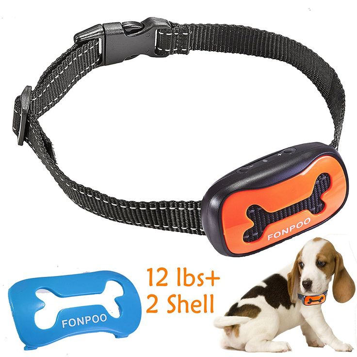 No Bark Collar ,Bark Control Training Collar With 7 Sensitivity Level and Adjustable Collar,100% No Harm Dog Bark Collar With Warning Beep and Safe Shock,Safe Barking Collar to Stop Dog Barking. ** Click on the image for additional details. (This is an affiliate link and I receive a commission for the sales) #PetDogs
