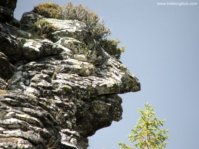 Lomasel Rock - #Calimani #mountains, #Transylvania