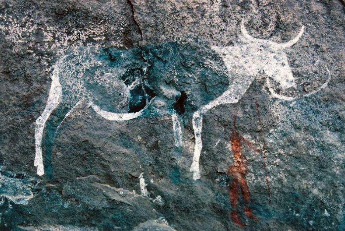 nguni bushman rock art Leliekloof