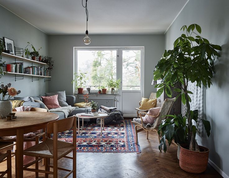 Livingroom with green/blue/grey painted walls, green plants, patterned rug and string-shelfs. Scandinavian decor ideas and how to choose lamp according to ceiling height.