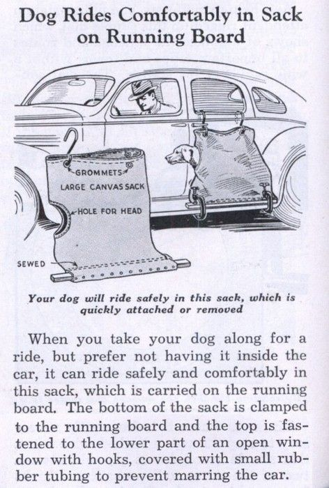 15 Vintage Products That Are Trying To Kill You. Mitt Romney should have seen this before he put his dog on the roof.
