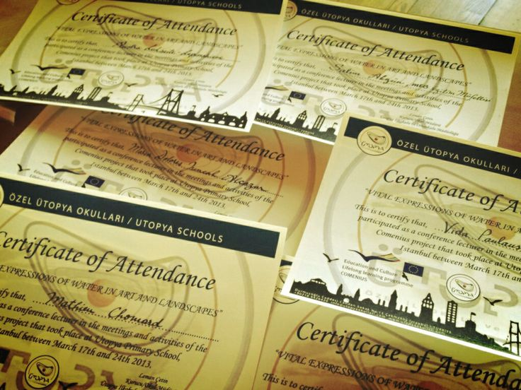 Ütopya Schools - Certificate - Atölye MOnArchy 2013