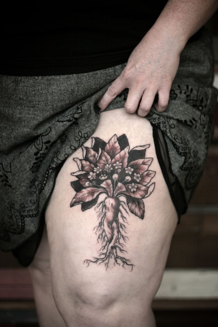 Colorful Anatomy Tattoo Portland Picture Collection - Anatomy and ...