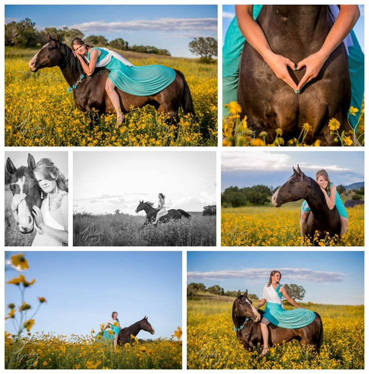 Senior girl pictures with horse in the sunflowers! Senior Portrait Photography