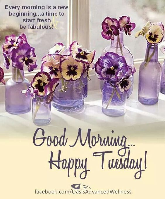 Every Morning Is A New Beginning Good Morning Happy Tuesday