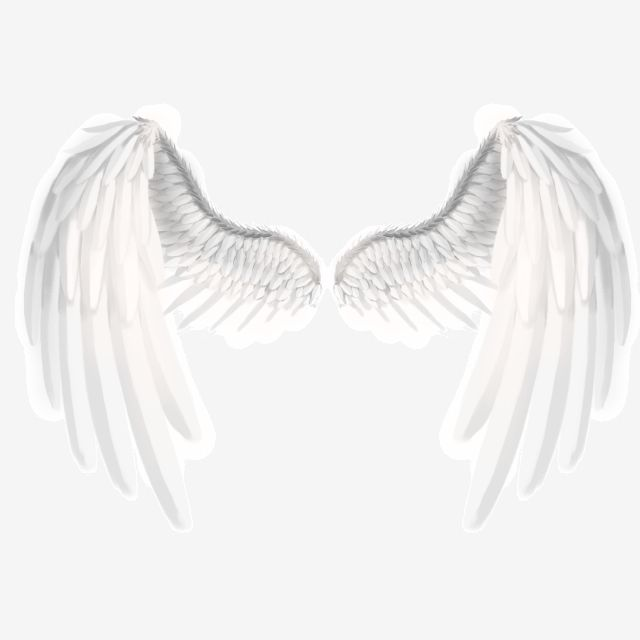 Angel Beautiful White Wings Angel Wings White Wings Wings Png Transparent Clipart Image And Psd File For Free Download White Wings Wings Png Wings Art