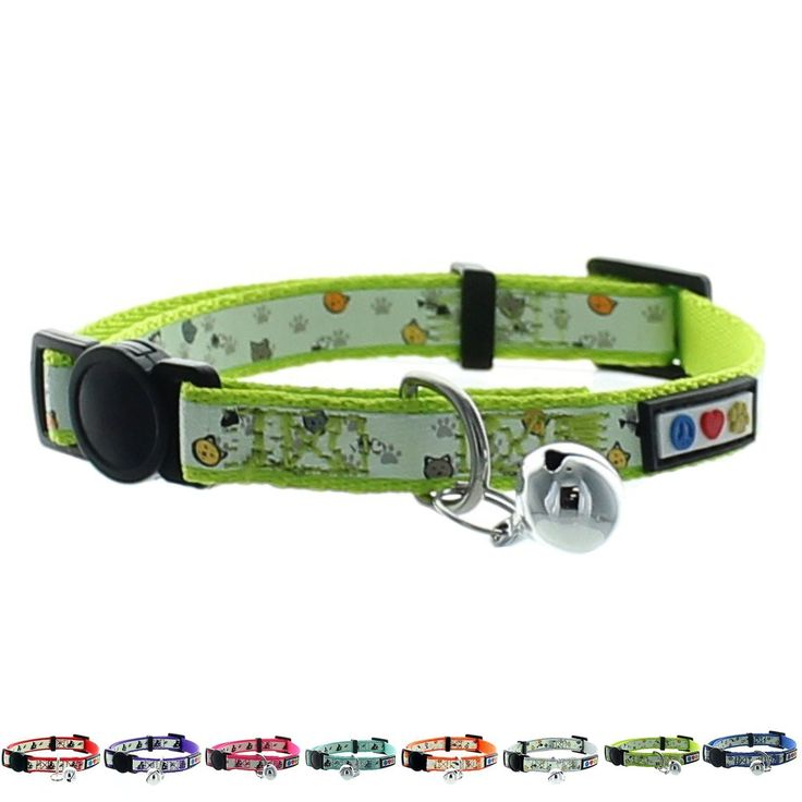 #Cat #Collars Buy Online Pawtitas Pet Glow In The Dark Cat Collar with Safety Buckle and Bell