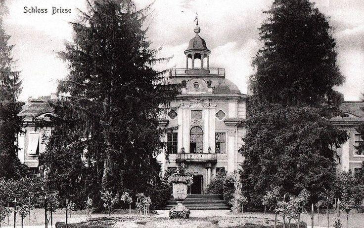 Brzezinka (powiat Oleśnica) Pałac von Kospothów zbudowany w 1725 roku. Jedna z najpiękniejszych rezydencji barokowych w Europie Środkowej. Olśniewała salą balową i myśliwską oraz kunsztownym parkiem udekorowanym największą na Dolnym Śląsku kolekcją posągów antycznych bogów i wazonów.