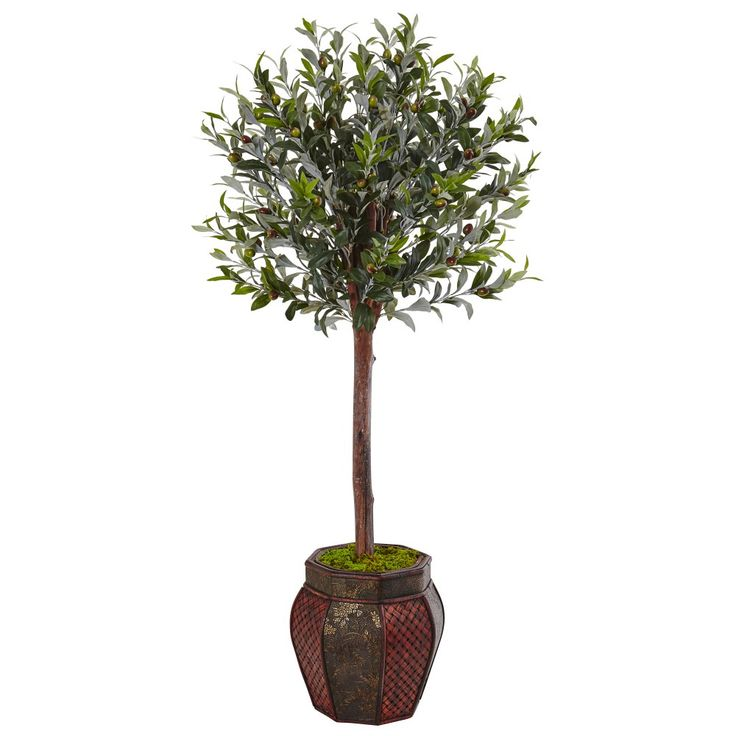 With superb attention to detail, this artificial topiary olive tree stands over 4' tall and comes in a weave pattern planter. A pair of these would be perfect for your entryway or reception area. Comes with lush natural moss for a complete look.