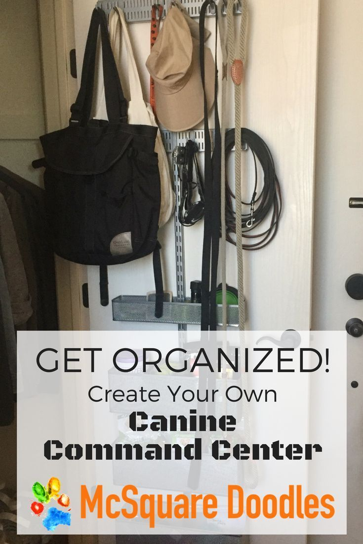 Create A Canine Command Center Love Dogs Pin Here Dogs Pets Pet Organization