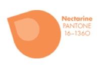 PANTONE 16-1360 Nectarine #FCRS13