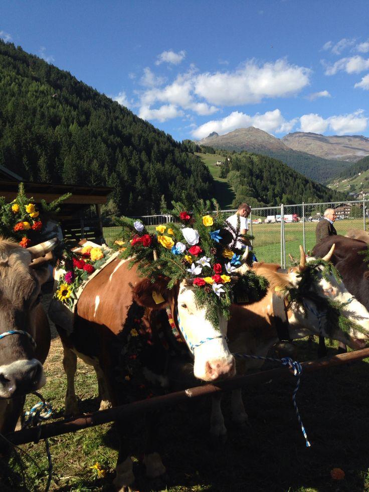 Lombardia Alta Valtellina, Valdidentro Mountain Feast !