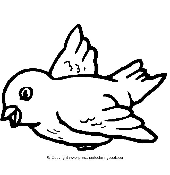 bird coloring pages rspb birds - photo#11