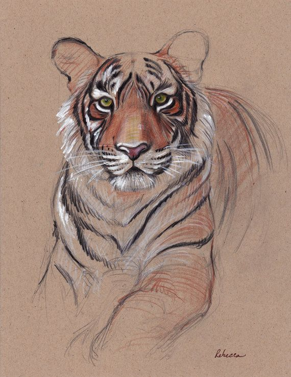UNFINISHED BUSINESS - Original Tiger Drawing - Mixed Media